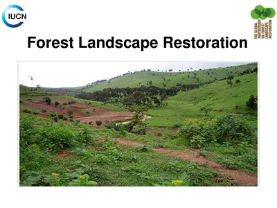 Forest Landscape Restoration Overview