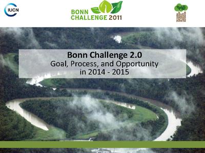 The Bonn Challenge Phase 2