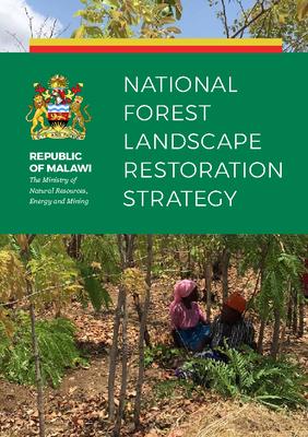National Forest Landscape Restoration Strategy