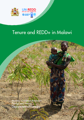 Tenure and REDD+ in Malawi