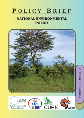 Policy Brief on the National Environmental Policy of Malawi